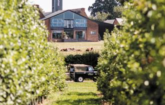 English Wine & Chase Distillery Tour