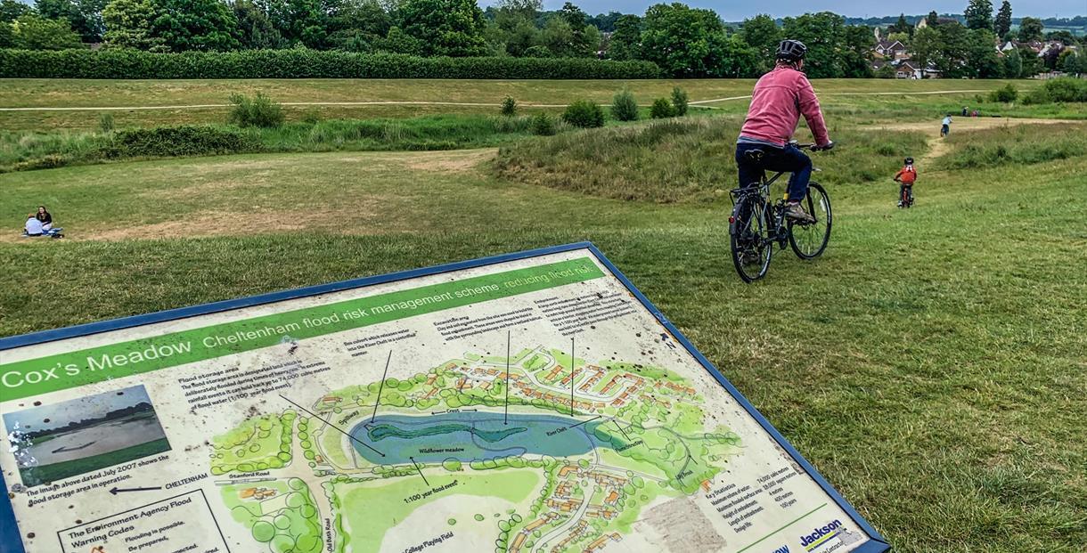 Cox's meadow Cheltenham