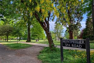 Montpellier Garden Cheltenham