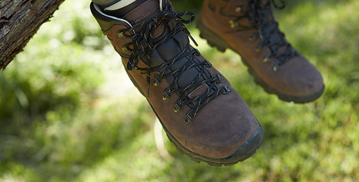 Pair of walking boots