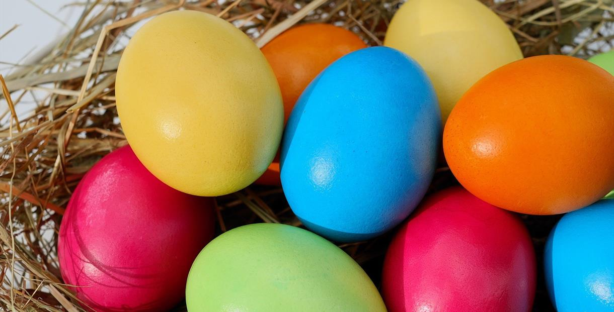 The Maggie's Easter Egg Hunt
