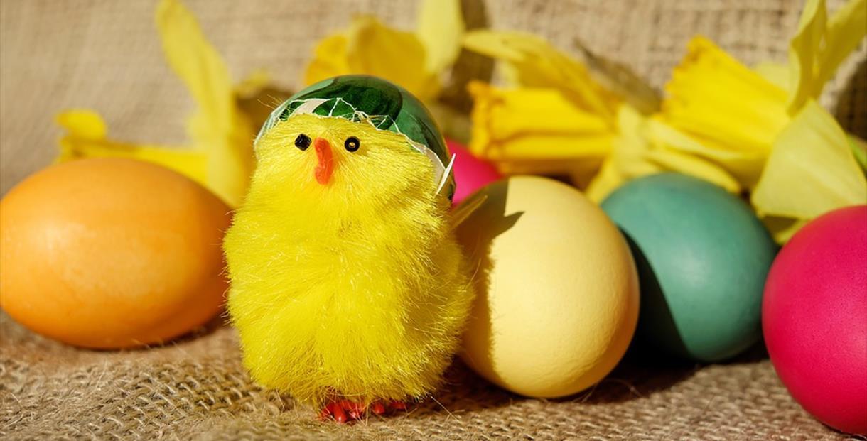 Easter Eggstravaganza and Teddy Bear Parachute Jump at Leckhampton Court Hospice