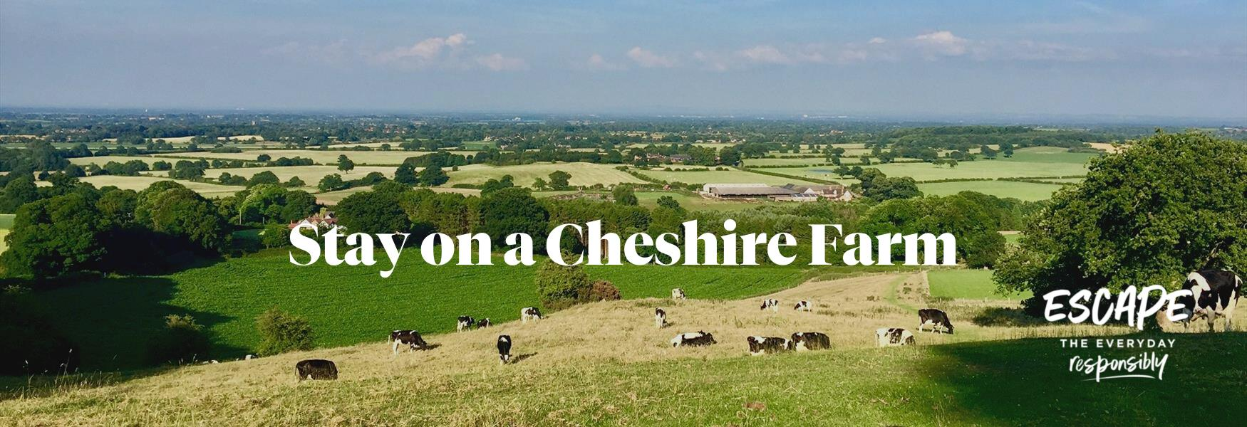 Stay on a Cheshire Farm