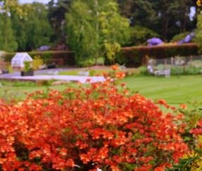 Ness Botanic Gardens |