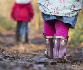 Top 10 Walks in Cheshire this Autumn