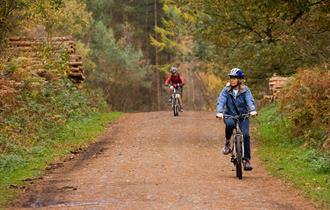 Delamere Forest Cycleways