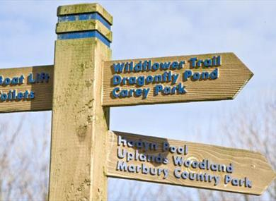 Northwich Community Woodlands