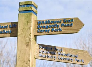 Northwich Community Woodlands