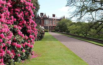Live in the Park at Arley Hall
