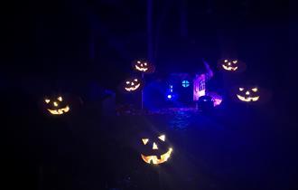 The Glorious Glowing Lantern Parade