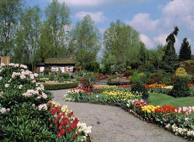 Bridgemere Gardens