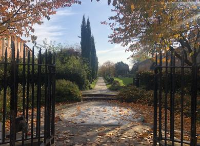 Roman Garden Chester. Credit ChesterBID