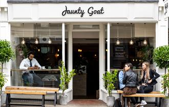 Jaunty Goat