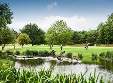 Mottram Hall Golf Course