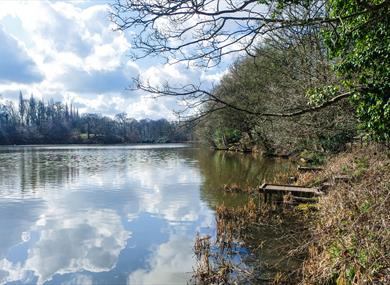 Lymm Dam. Photo Credit: Matt Harrop