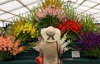 Woman in a sun hat looking  at flowers