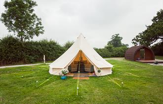 Yurt at Pitch & Canvas