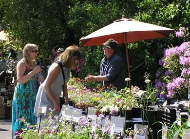 Plant Hunters' Fair at Capesthorne Hall