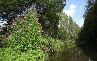 Take a circular walk of The Lovell Quinta Arboretum