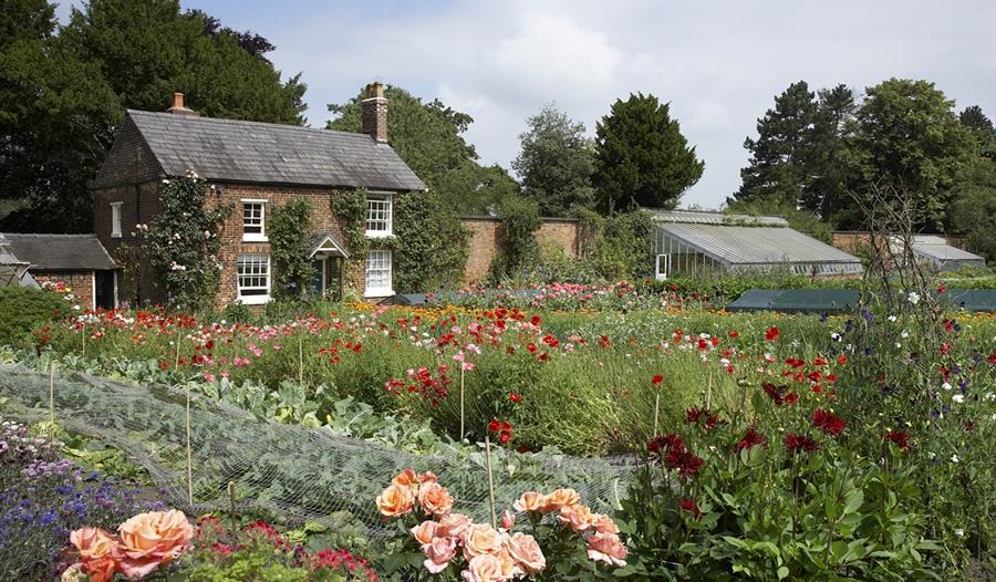 Kitchen garden at Rode Hall & Gardens