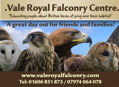 Vale Royal Falconry Centre