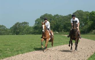 Broxton Hall Gallops
