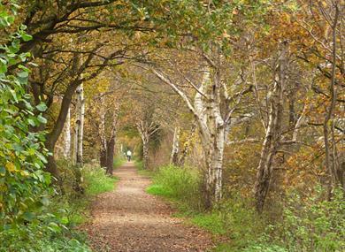 The Whitegate Way west of Grange Lane. Photo credit: Stephen Craven