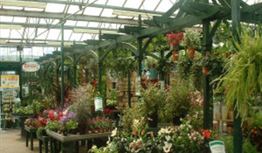 high legh garden centre