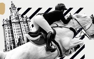 Voltaire Design Liverpool International Horse Show
