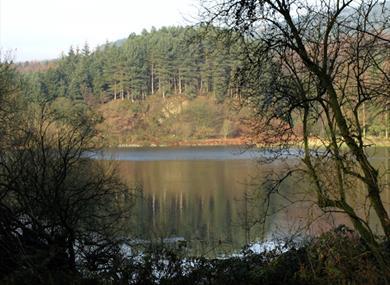 Macclesfield Forest in Autumn