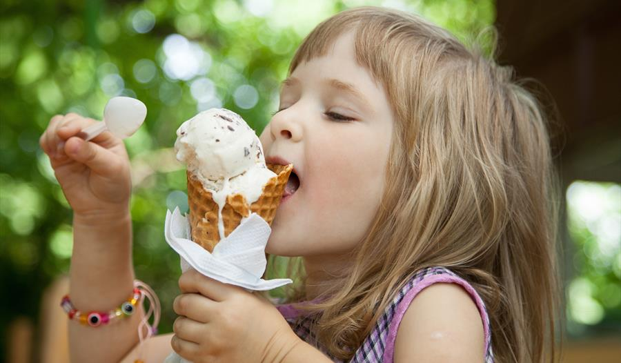 Enjoy award winning ice cream at Backford Belles Ice Cream