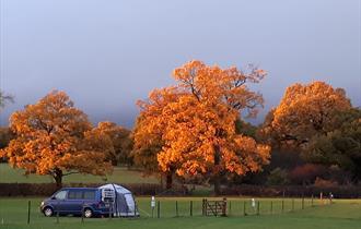 Sycamore Farm Caravan Site