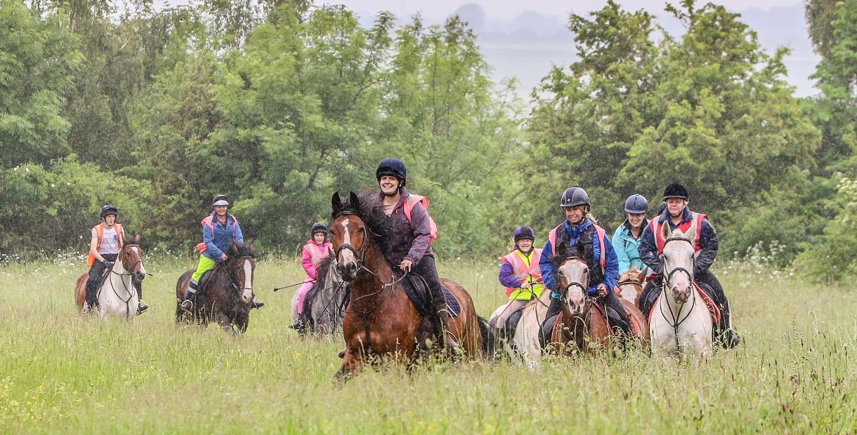 Group horse trekking