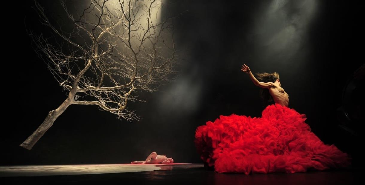 Dracula, Vortice Dance