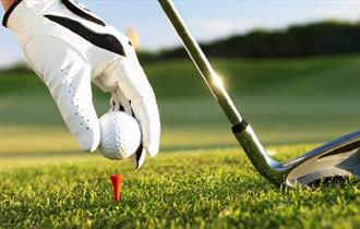 Golf club and tee
