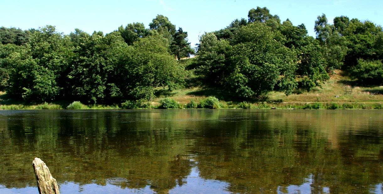 Hardwick Ponds