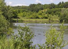 Holmebrook Valley Country Park lake