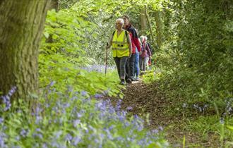 Walking in Moss Valley