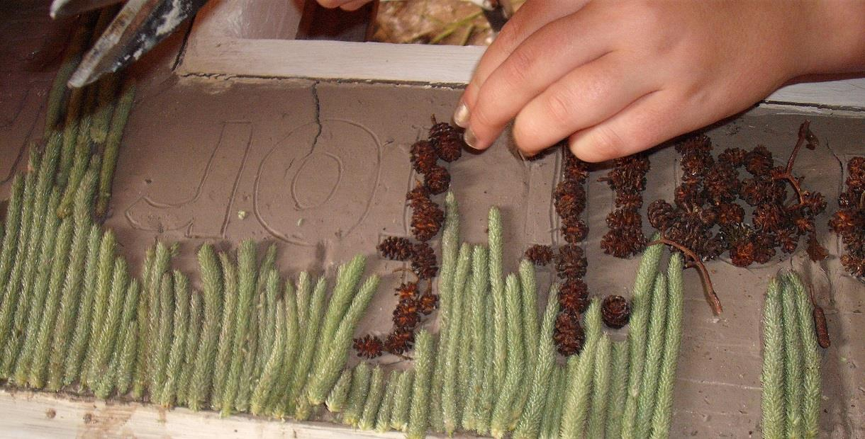 Making a well dressing
