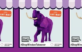 The Colchester Fringe Festival logo - a purple elephant - and he #shopwindowtakeover hashtag
