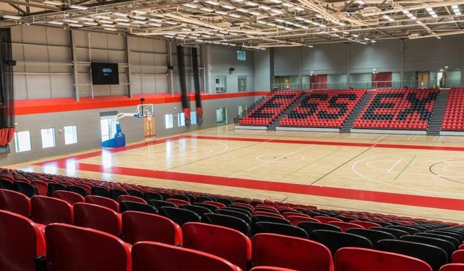 Essex Rebels Basketball