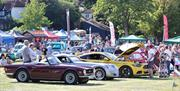 Classic Cars in Castle Park Colchester