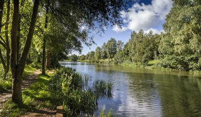 The fishing lake at High Woods Country Park