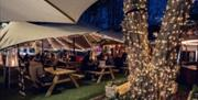 An outdoor bar under a white canopy, with fairy lights wrapped around a tree trunk