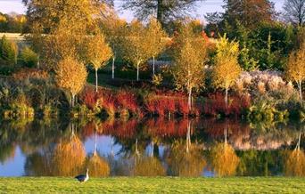 Marks Hall in Autumn