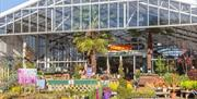 Perrywood Garden Centre, Tiptree
