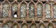 A close up of the brickwork at St Botolph's Priory