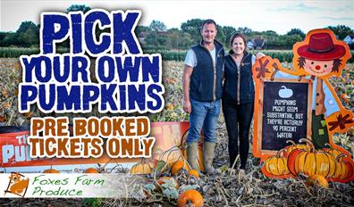 """""""Pick your own pumpkins - pre booked tickets only"""" - an image of the pumpkin patch"""