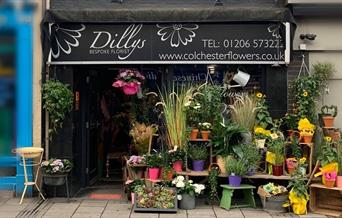Dillys, a bespoke Florist in the heart of Colchester