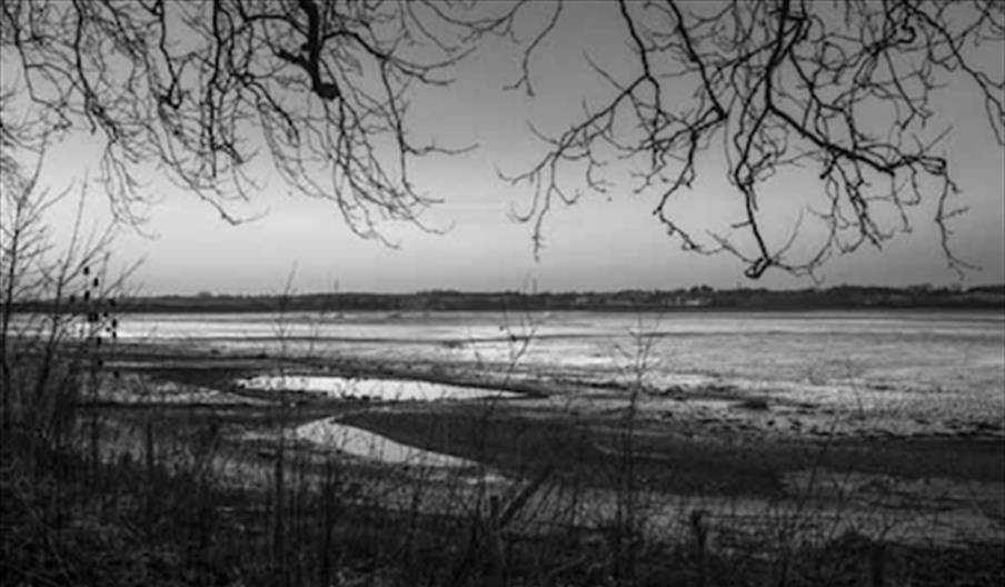 A black and white image of the Stour Estuary